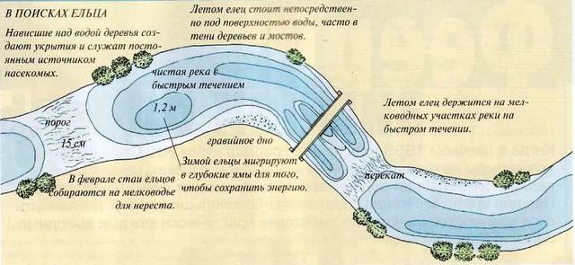 снасть для малой реки