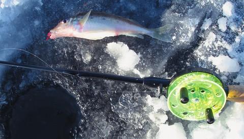 рыбалка сторожки сам
